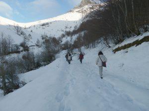 trekking por Picos de Europa con nieve