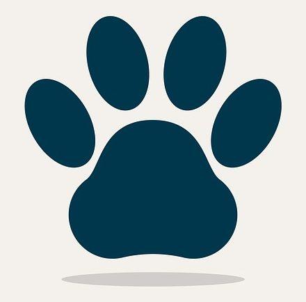 Las mascotas son bienvenidas. Pero siempre bajo petición.